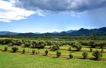 24 Hours in the Scenic Rim Part 1