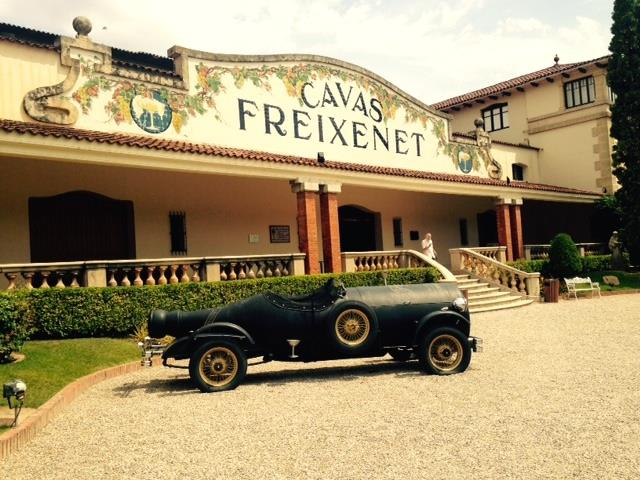 Freixenet This Magnificent Life Wine & Imbibing Cava