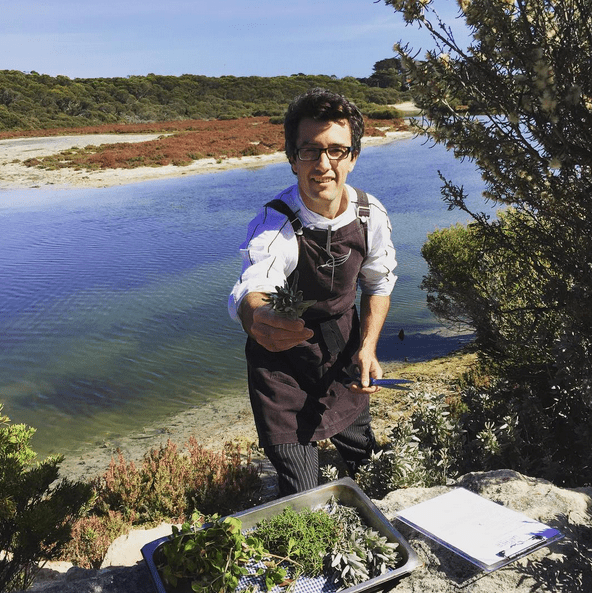 This Magnificent Life Rymill Estate FCoastal Foraging Experience