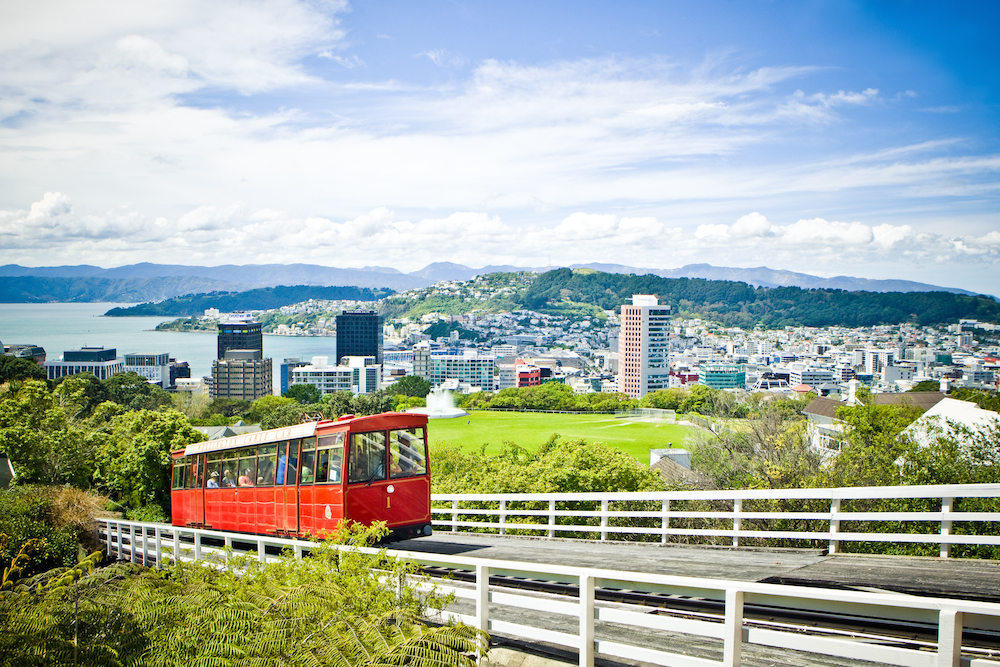 Wellington This Magnificent Life