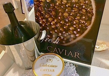 Caviar This Magnificent LIfe