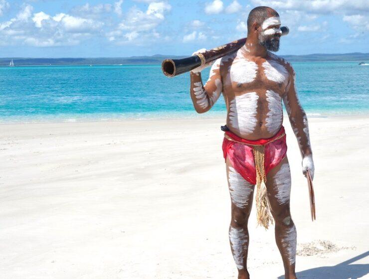 Australia Hervey Bay Eco Marine Tours This Magnificent Life