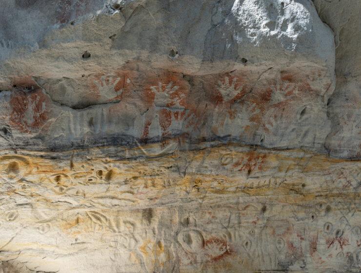 Carnarvon Gorge This Magnificent Life
